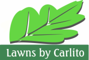 Lawns by Carlito